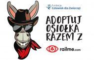 Adoptuj osiołka razem z RailMe.com!