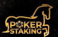 Poker online – Staking na Americas Cardroom. PokerStars szuka ambasadora na Twitchu